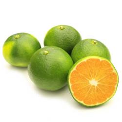 Mandarini Satsuma Italia Bio