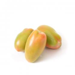 Pomodoro Verde Ovale