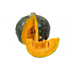 Zucca Iron Cup