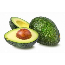 Avocado Kenya