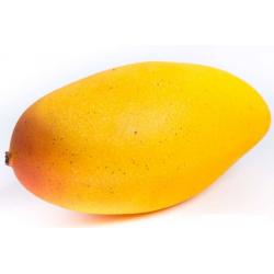 Mango Cat.1