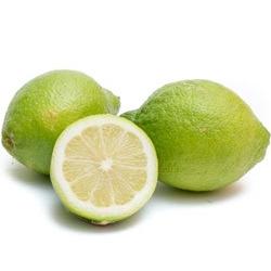 Limoni Verdello Cal.4 Cat.1