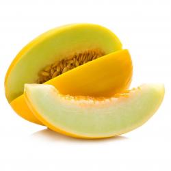 Melone Giallo Italia Bio